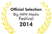 bigMINImedia_2014_officialSelection